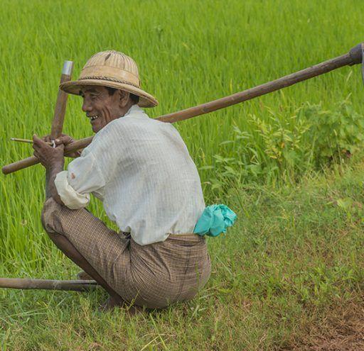 Fotografía  campesino en  Myanmar