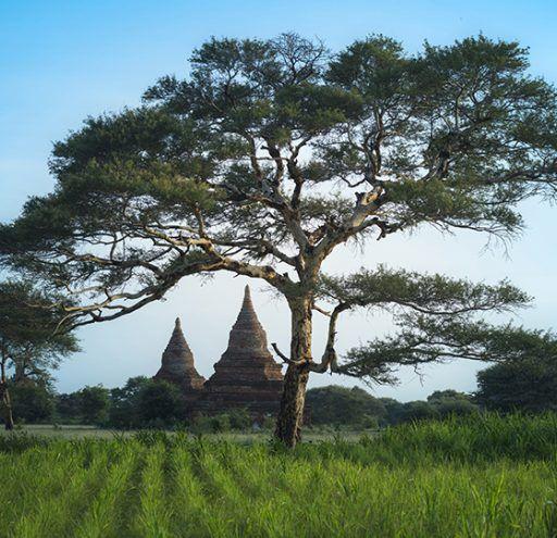 Fotografía  Bagan Myanmar 2