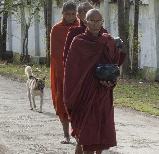 Fotografía  monjes budistas Myanmar